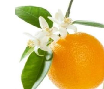 naranja azahar bombones pasteleria belenguer
